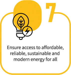 Ensure Access to affordable modern Energy