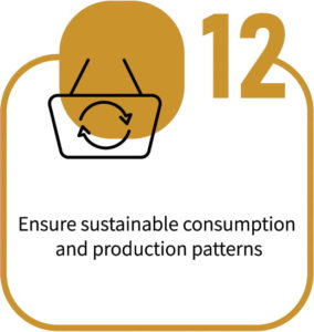 Ensure Sustainable Consumption