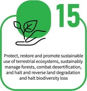Protect & Sustainably Manage Terrestrial Ecosystems